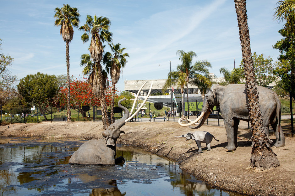 Dorte Mandrup La Brea Tar Pits Irreplaceable places UNESCO Danish architecture